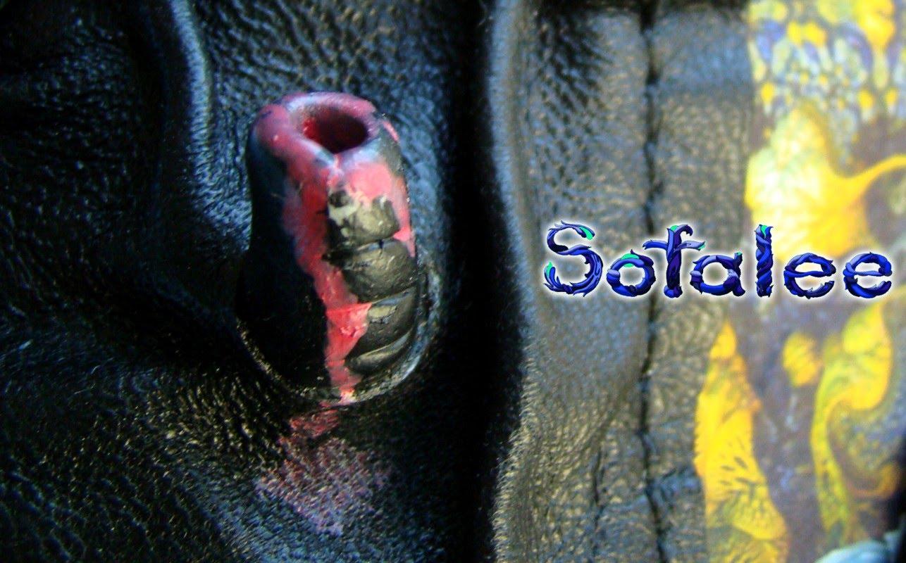 эксклюзивная кожаная куртка в стиле рок 15